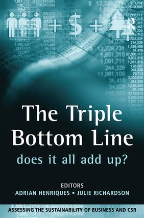 The Triple Bottom Line: Does It All Add Up, 1st Edition (Paperback) book cover