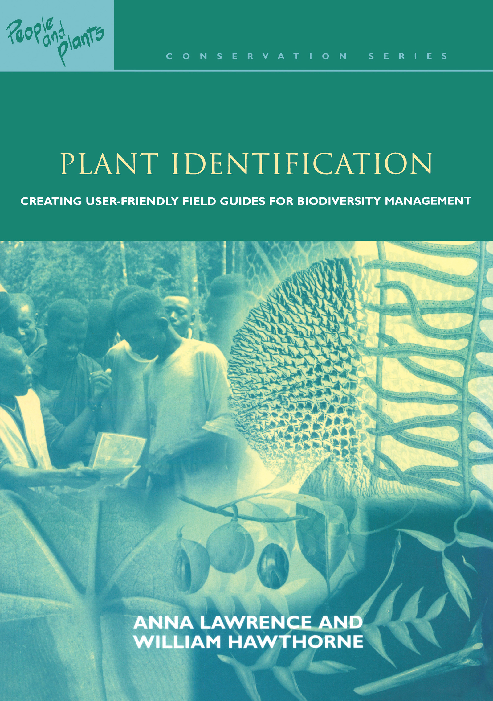 Plant Identification: Creating User-Friendly Field Guides for Biodiversity Management, 1st Edition (Paperback) book cover