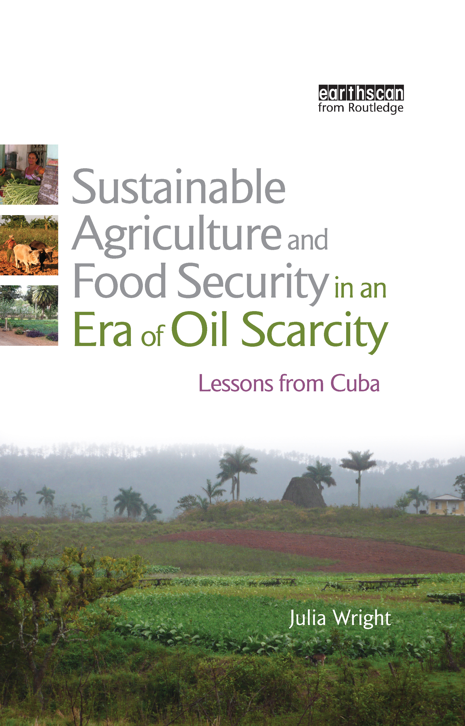 Sustainable Agriculture and Food Security in an Era of Oil Scarcity: Lessons from Cuba book cover
