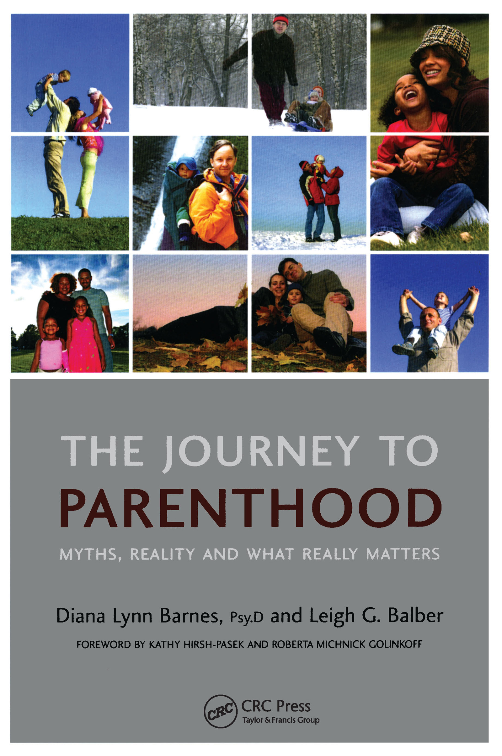 The Journey to Parenthood: Myths, Reality and What Really Matters, 1st Edition (Paperback) book cover