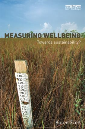 Measuring Wellbeing: Towards Sustainability? book cover