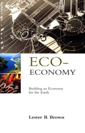 Eco-Economy: Building an Economy for the Earth, 1st Edition (Hardback) book cover