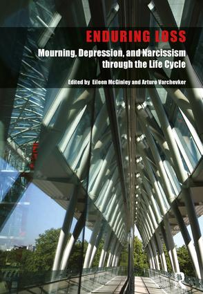 Enduring Loss: Mourning, Depression and Narcissism Throughout the Life Cycle, 1st Edition (Paperback) book cover