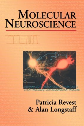 Molecular Neuroscience: 1st Edition (Paperback) book cover