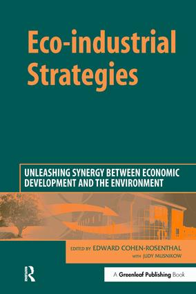 Eco-industrial Strategies: Unleashing Synergy between Economic Development and the Environment, 1st Edition (Hardback) book cover