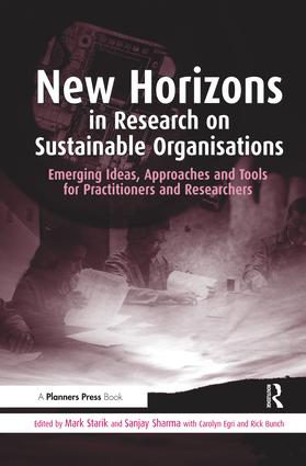 New Horizons in Research on Sustainable Organisations: Emerging Ideas, Approaches and Tools for Practitioners and Researchers book cover