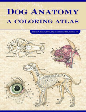 Dog Anatomy: A Coloring Atlas, 1st Edition (Paperback) book cover