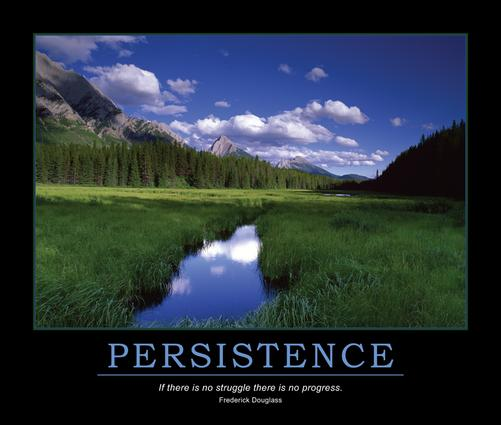 Persistence Poster: 1st Edition (Poster) book cover