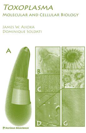 Toxoplasma: Molecular and Cellular Biology, 1st Edition (Hardback) book cover