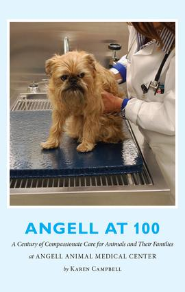 Angell at 100: A Century of Compassionate Care for Animals and Their Families at Angell Animal Medical Center, 1st Edition (Paperback) book cover