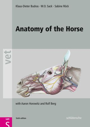 Anatomy of the Horse: 6th Edition (Hardback) book cover