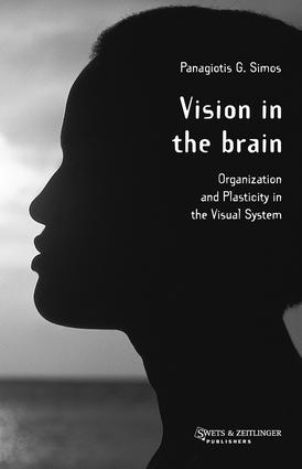 Vision in the Brain: 1st Edition (Hardback) book cover