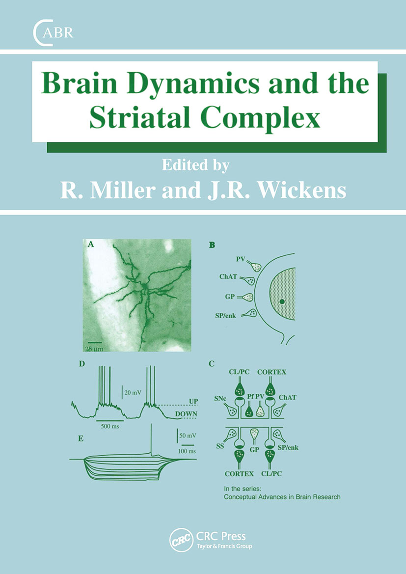 Brain Dynamics and the Striatal Complex (Hardback) book cover
