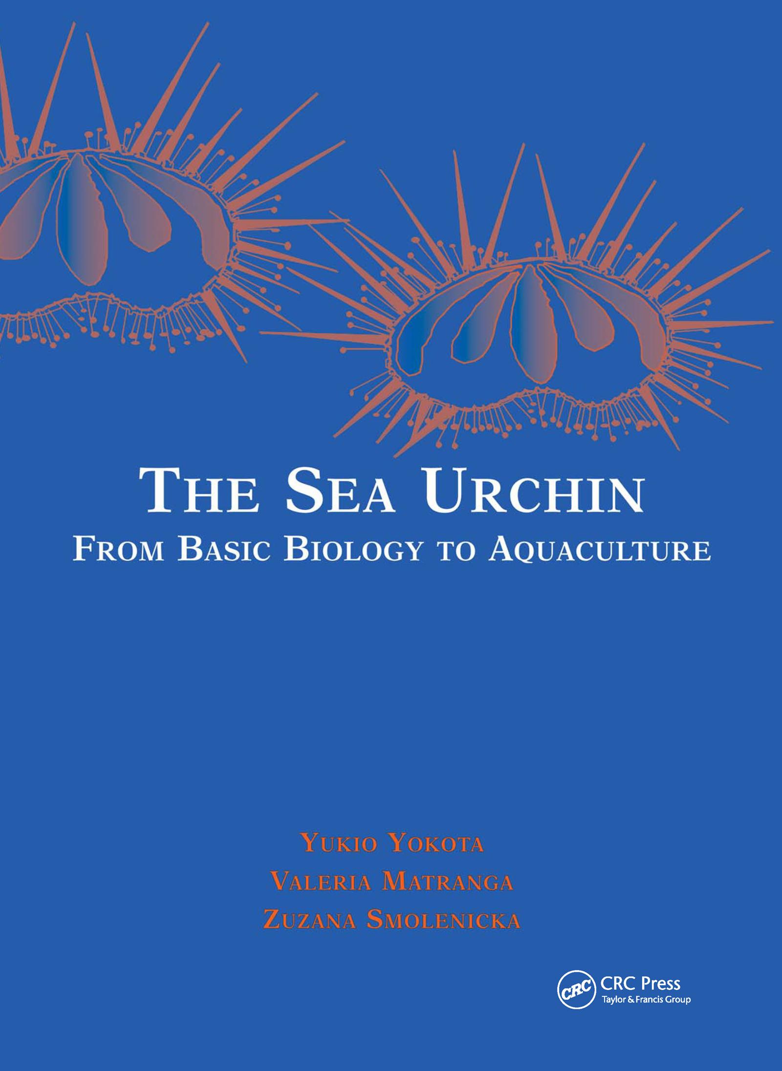 The Sea Urchin: Proceedings of the Workshop at the International Marine Centre, Torregrande, Sardinia, ITaly 2000, 1st Edition (Hardback) book cover