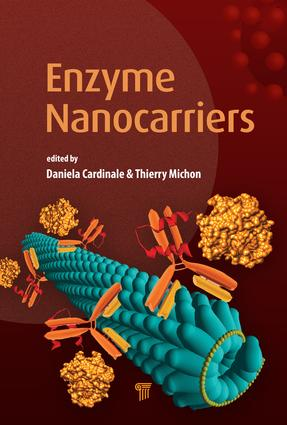 Enzyme Nanocarriers: 1st Edition (Hardback) book cover