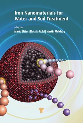 Iron Nanomaterials for Water and Soil Treatment: 1st Edition (Hardback) book cover