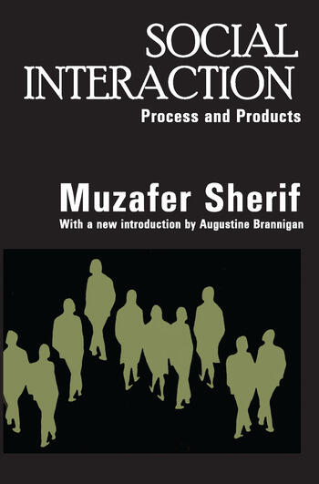 Social Interaction Process and Products book cover