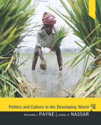 Politics and Culture in the Developing World book cover