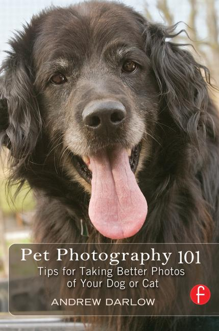 Pet Photography 101 Tips for taking better photos of your dog or cat book cover