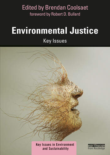 Environmental Justice Key Issues book cover