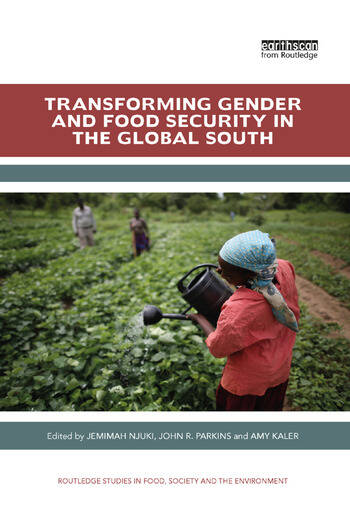 Transforming Gender and Food Security in the Global South book cover