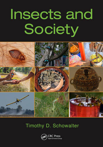 Insects and Society book cover