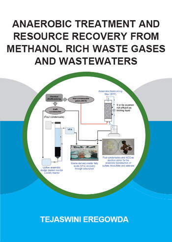 Anaerobic Treatment and Resource Recovery from Methanol Rich Waste Gases and Wastewaters book cover