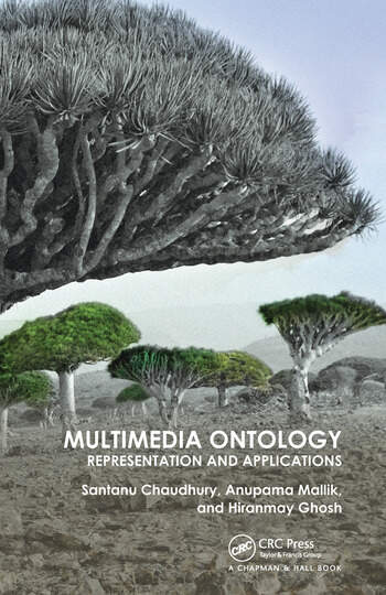 Multimedia Ontology Representation and Applications book cover