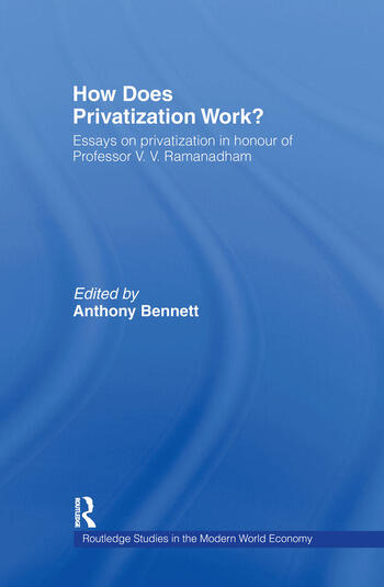 How Does Privatization Work? book cover