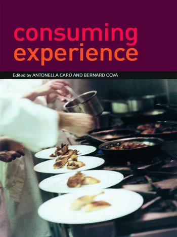 Consuming Experience book cover