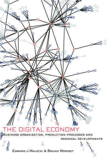 The Digital Economy Business Organization, Production Processes and Regional Developments book cover