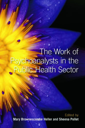 The Work of Psychoanalysts in the Public Health Sector book cover