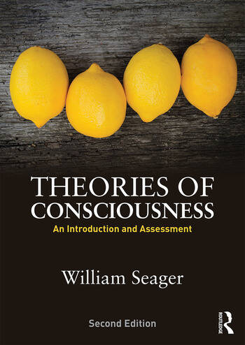 Theories of Consciousness An Introduction and Assessment book cover