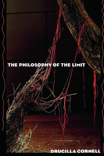 The Philosophy of the Limit book cover