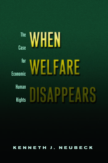 When Welfare Disappears The Case for Economic Human Rights book cover