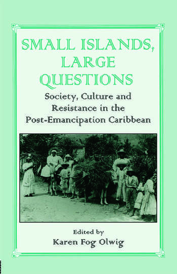 Small Islands, Large Questions Society, Culture and Resistance in the Post-Emancipation Caribbean book cover