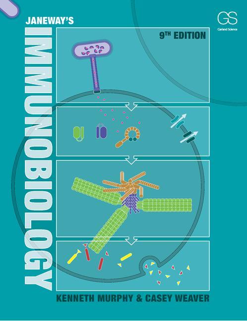 free Lippincott\\'s Cancer Chemotherapy Handbook 2001