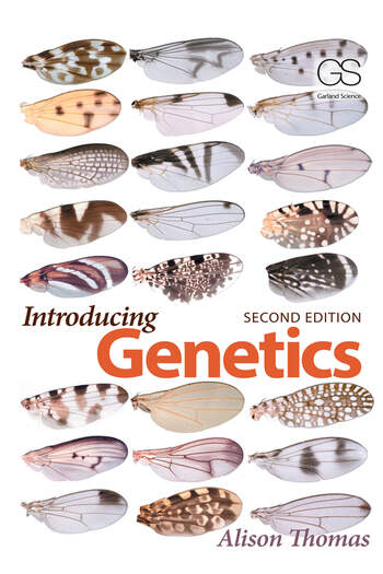 Introducing Genetics From Mendel to Molecules book cover