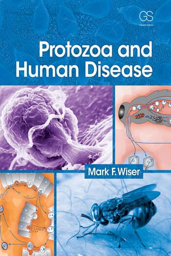 Protozoa and Human Disease book cover