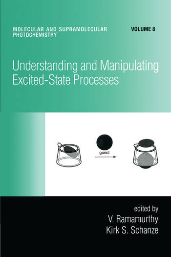 Understanding and Manipulating Excited-State Processes book cover