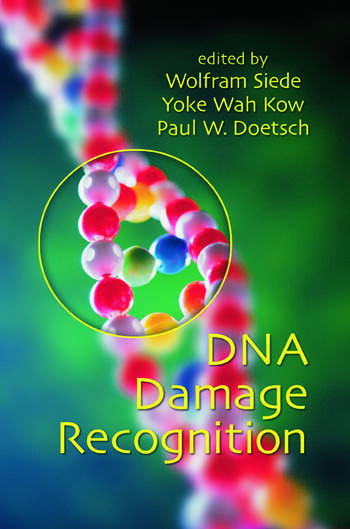 DNA Damage Recognition book cover