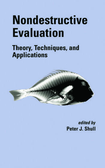 Nondestructive Evaluation Theory, Techniques, and Applications book cover