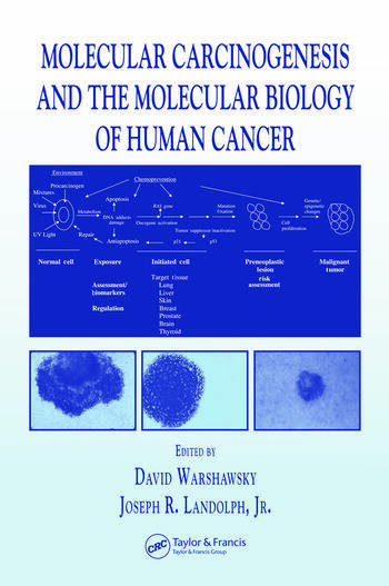 Molecular Carcinogenesis and the Molecular Biology of Human Cancer book cover