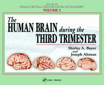 The Human Brain During the Third Trimester book cover
