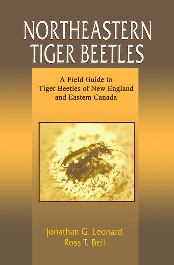 Northeastern Tiger Beetles A Field Guide to Tiger Beetles of New England and Eastern Canada book cover