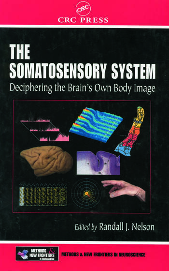 The Somatosensory System Deciphering the Brain's Own Body Image book cover