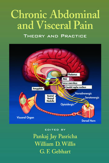Chronic Abdominal and Visceral Pain Theory and Practice book cover