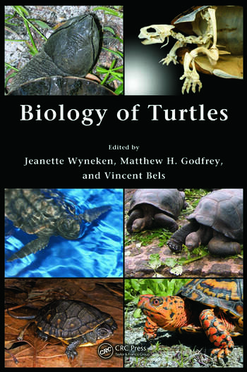 Biology of Turtles From Structures to Strategies of Life book cover