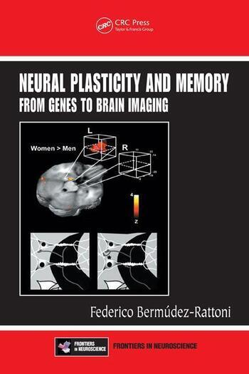 Neural Plasticity and Memory From Genes to Brain Imaging book cover