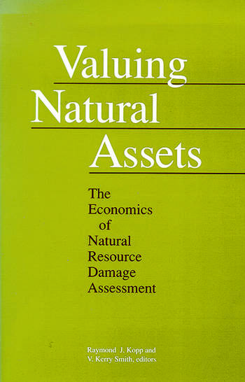 Valuing Natural Assets The Economics of Natural Resource Damage Assessment book cover